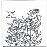 Diversos - Alfabeto X