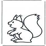 Animales - Ardilla 1