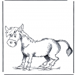 Animales - Burro
