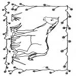 Animales - Caballo 1