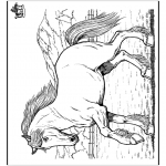 Animales - Caballo 8