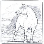Animales - Caballo al viento