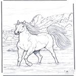 Animales - Caballo en el agua
