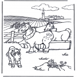 Animales - Caballos