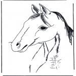 Animales - Cabeza de caballo 3