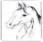 Cabeza de caballo 3