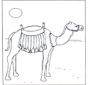 Camello al sol