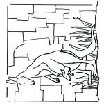 Animales - Canguro 1