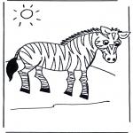 Animales - Cebra