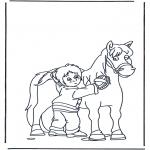 Animales - Cepillando al caballo