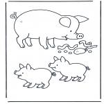 Animales - Cerdo