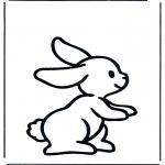 Animales - Conejo 1