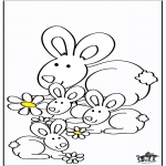 Animales - Conejos 2