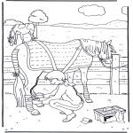 Animales - Cuidando del caballo 1