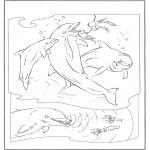 Animales - Delfines 2