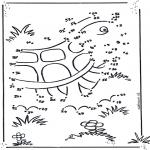 Manualidades - Dibuja la tortuga