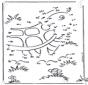 Dibuja la tortuga