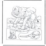Animales - Elefante 1