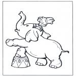 Animales - Elefante en el circo
