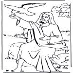 Láminas de la Biblia - Elías y el cuervo