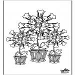Diversos - Flores 5