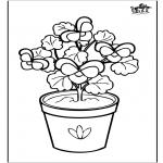 Diversos - Flores 6