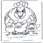 Animales - Gallina y polluelos