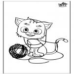 Animales - Gato 5
