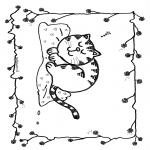 Animales - Gato durmiendo