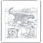 Animales - Guepardo