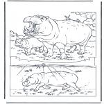 Animales - Hipopótamo 1