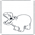 Animales - Hipopótamo contento