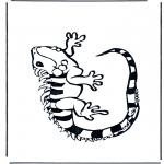 Animales - Iguana