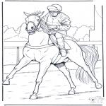 Animales - Jinete a caballo