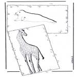 Animales - Jirafa y foca