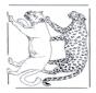 León y leopardo