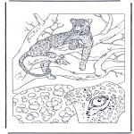 Animales - Leopardo 1