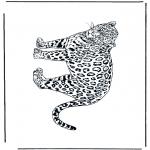 Animales - Leopardo 2