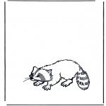 Animales - Mapache