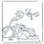Animales - Mapache y colibrí