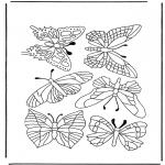 Animales - Mariposas 1