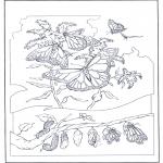 Animales - Mariposas 2
