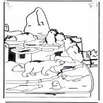 Animales - Oso polar y foca