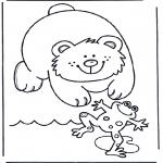 Animales - Oso y rana