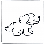 Animales - Perro 1