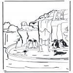 Animales - Pingüinos 1