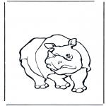Animales - Rinoceronte 1