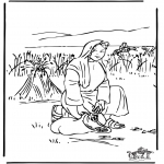 Dibujos de la Biblia - Ruth 2