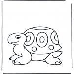 Animales - Tortuga