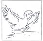 Un ganso volando